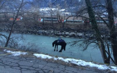 Tierrettung Pferd und Reiterin im Rotten